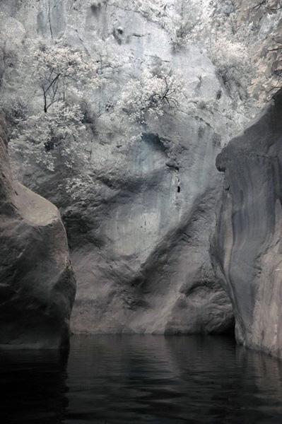 ИК фотография - деревья на скалах